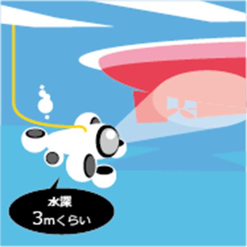 課題解決例 漁船船底の点検